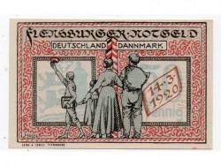 Flensburg 50 Pfennig (16-1-1.920) KL 355a S/C-