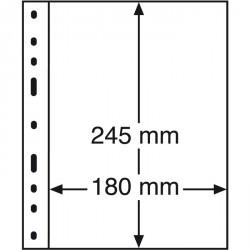 Hojas OPTIMA, 1 división, transparentes