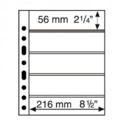 Hojas de plástico GRANDE con 5 Bandas horizontales negras